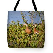 Black-bellied Whistling Ducks Tote Bag