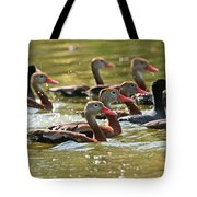 Black-bellied Whistling Ducks Tote Bag