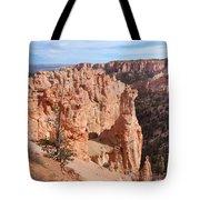 Black Birch Canyon Lookout Tote Bag