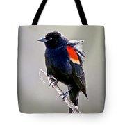 Black Bird Tote Bag by Athena Mckinzie