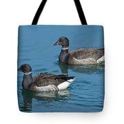 Black Brant Pair Swimming Tote Bag
