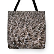 Black-browed Albatross Nesting Colony Tote Bag by Art Wolfe