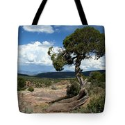 Black Canyon Juniper Tote Bag