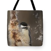 Black-capped Chickadee In Winter Tote Bag by Mircea Costina Photography