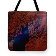 Black Cat In The Moonlight Tote Bag