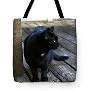 Black Cat On Porch Tote Bag