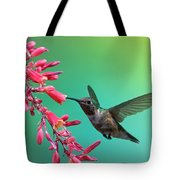 Black Chinned Hummingbird Tote Bag