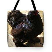 Black Cochin Tote Bag