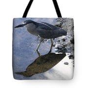 Black Crowned Night Heron And Shadow Tote Bag