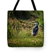 Black-crowned Night Heron At Carson Lake Wetlands Tote Bag