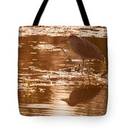 Black-crowned Night Heron Sunset Tote Bag