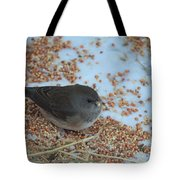 Black Eyed Junco Tote Bag