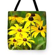 Black Eyed Susan 1 Tote Bag by Marty Koch