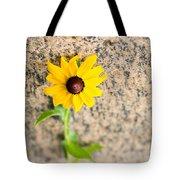 Black-eyed Susan Flower On A Gneiss Rock Tote Bag