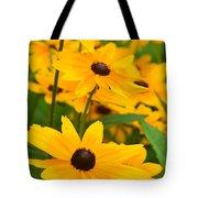 Black Eyed Susan - Flower Tote Bag