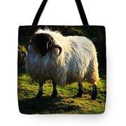 Black Faced Mountain Sheep Tote Bag