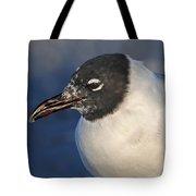 Black Headed Gull Portrait Tote Bag