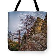 Black Hills Boulders Tote Bag