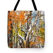 Black Hills Entanglement Tote Bag