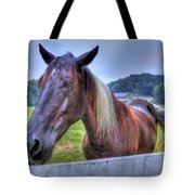 Black Horse At A Fence Tote Bag
