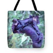 Black Iris Closeup Tote Bag