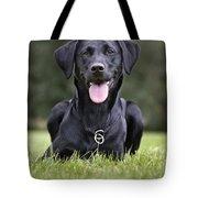 Black Labrador Dog Tote Bag