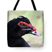Black Muscovy Head Study Tote Bag