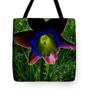 Black Narcissus Tote Bag