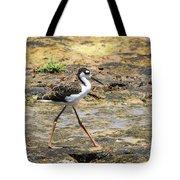 Black Neck Stilt Chick Eats And Eats Tote Bag