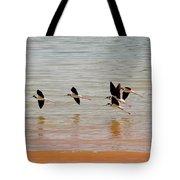 Black-necked Stilt - Lake Powell Tote Bag