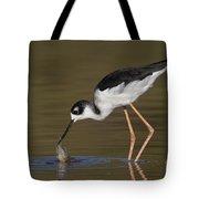 Black Necked Stilt With Fish Tote Bag