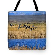 Black-necked Stilts In Flight Tote Bag