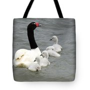Black Necked Swan Patagonia  Tote Bag