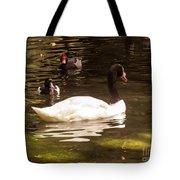 Black-necked Swan Tote Bag