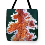 Black Oak Leaf Rime Ice Yosemite National Park California Tote Bag