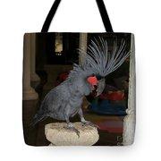 Black Palm Cockatoo Tote Bag