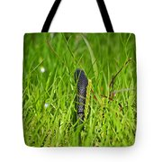 Black Racer Back Tote Bag by Al Powell Photography USA