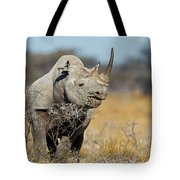 Black Rhino  Tote Bag