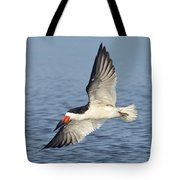 Black Skimmer Tote Bag