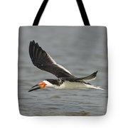 Black Skimmer Eating Fish Tote Bag