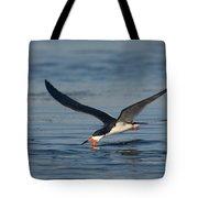 Black Skimmer Rynchops Niger Skimming Tote Bag