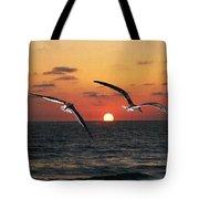 Black Skimmers At Sunset Tote Bag
