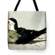 Black Skimmers Tote Bag