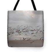 Black Skimmers On The Beach At Dawn Tote Bag