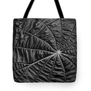 Black Star.. Tote Bag