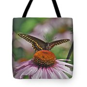 Black Swallowtail On Cone Flower Tote Bag