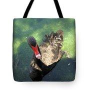 Black Swan 3 Tote Bag