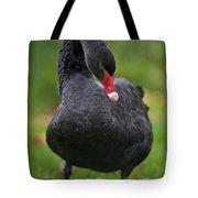 Black Swan Series - 2 Tote Bag