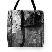Black Swan Series Iv - Black And White Tote Bag