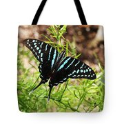 Black Swordtail Butterfly Tote Bag